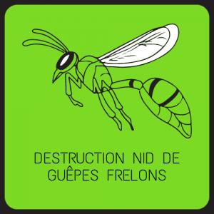 éradication destruction nid de frelons 77 Seine et Marne